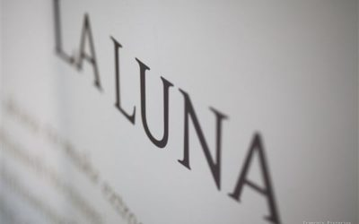 Announcing the release of our 2010 La Luna