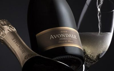 A bubbly launch of the 2010 vintage of Armilla