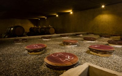 Ancient History meets Modern Biodynamic Winemaking at Avondale