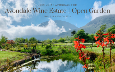 Avondale Wine Estate Opens Gardens – 24th & 25th October 2020